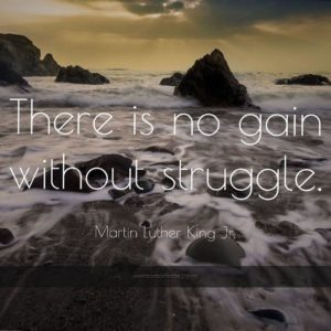 download 1174 martin luther king jr quote there is no gain without struggle …