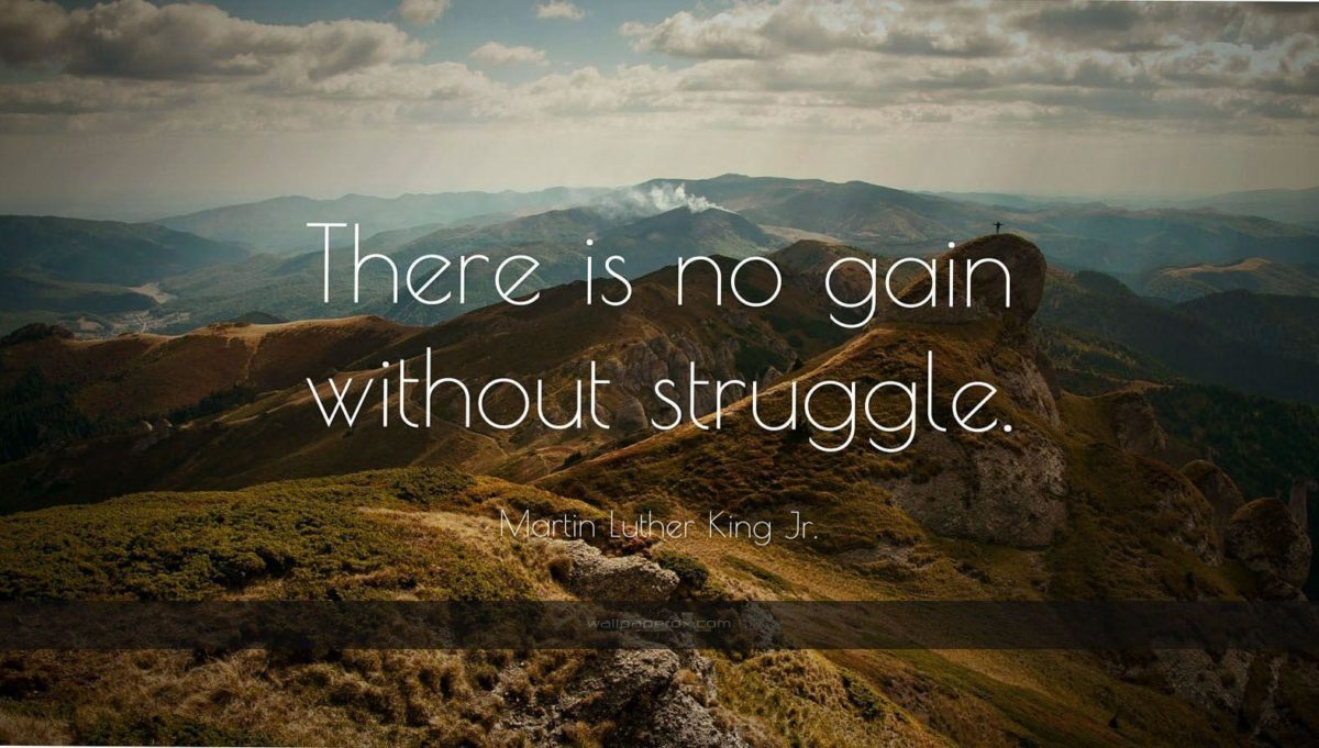 1173 martin luther king jr quote there is no gain without struggle …