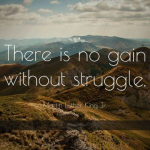 download 1173 martin luther king jr quote there is no gain without struggle …