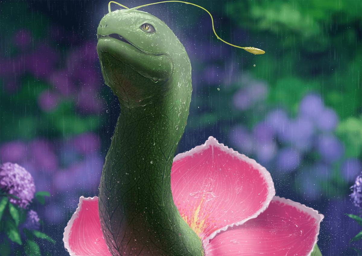 9 Meganium (Pokemon) HD Wallpapers | Background Images – Wallpaper …
