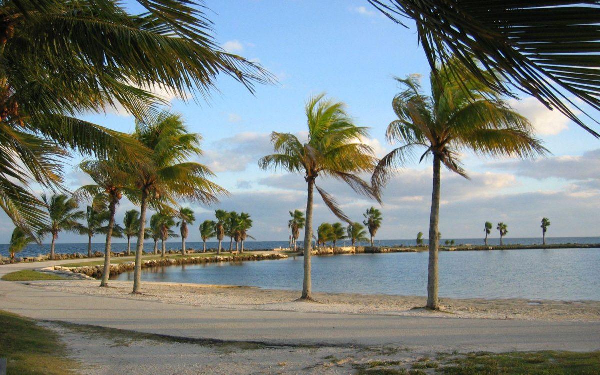 Windy Miami beach wallpaper – 158920
