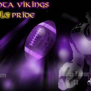 download Amazing Minnesota Vikings Best 2018 Collection | Beautiful images HD …