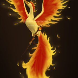 download Moltres by celinaclraw on DeviantArt