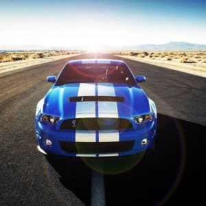 download Mustang Wallpaper by Apexx-iPredator on DeviantArt