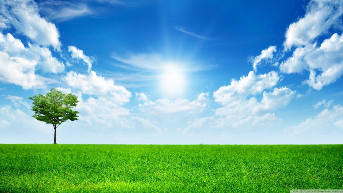 Green Nature ❤ 4K HD Desktop Wallpaper for • Dual Monitor …