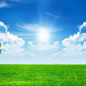 download Green Nature ❤ 4K HD Desktop Wallpaper for • Dual Monitor …