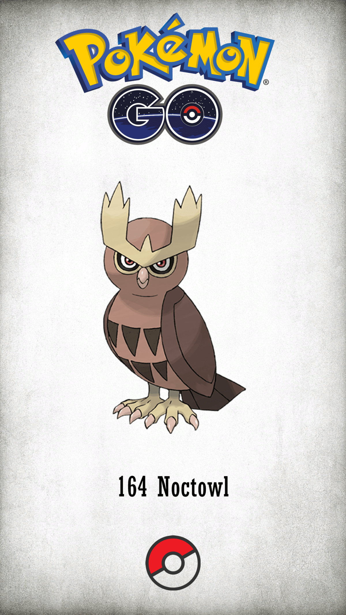 164 Character Noctowl | Wallpaper