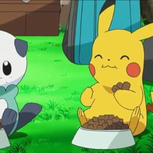 download Oshawott images Oshawott & Pikachu HD wallpaper and background …