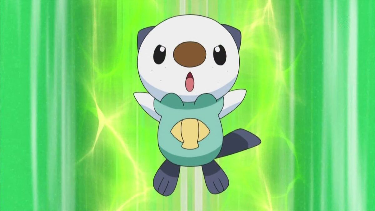 Oshawott images Oshawatt HD wallpaper and background photos (19259266)