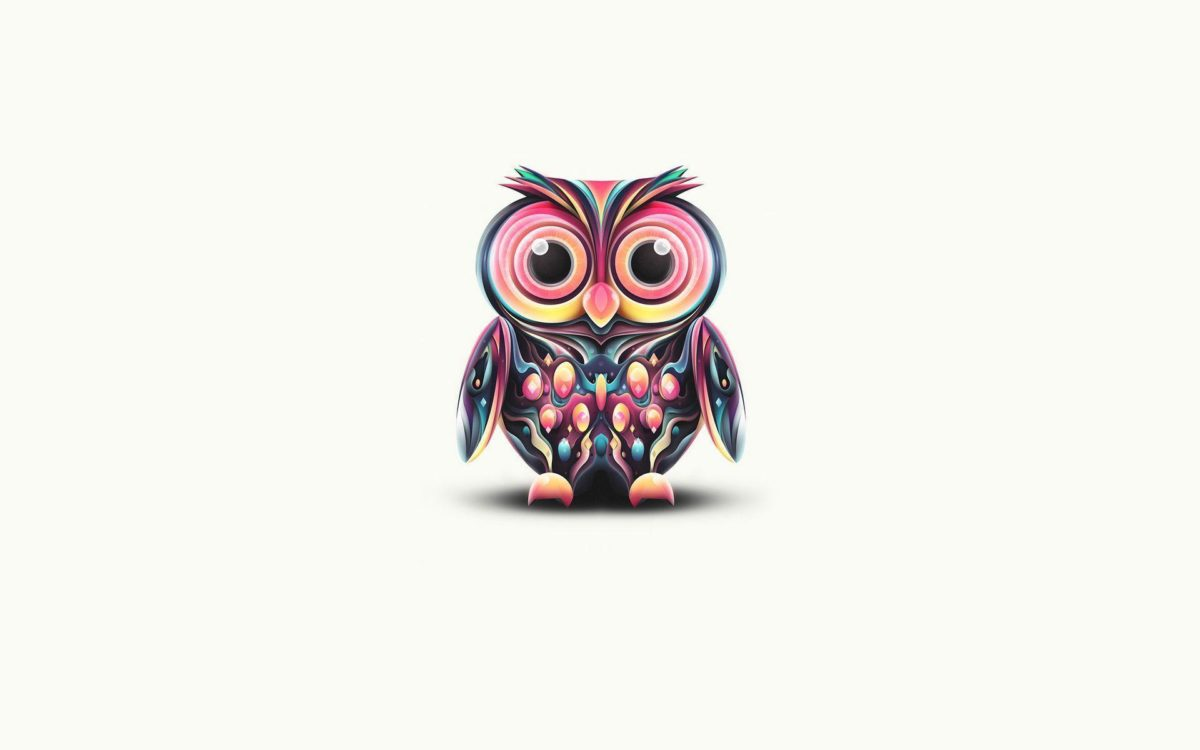 Owl Wallpapers – Full HD wallpaper search