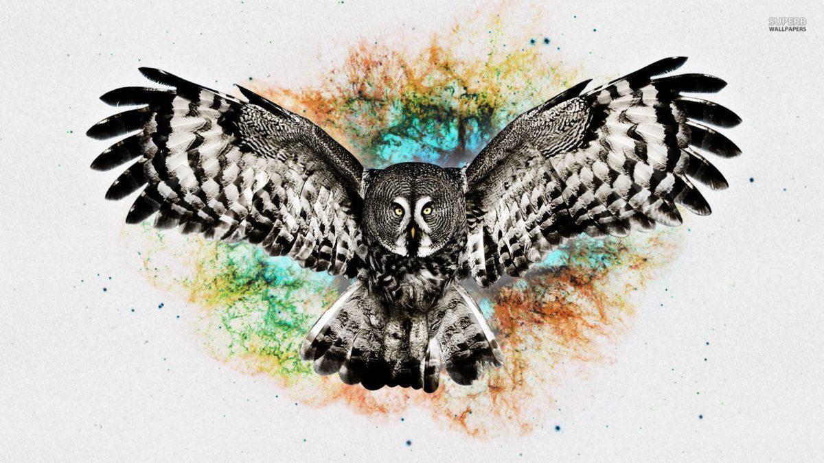 Owl wallpaper – Digital Art wallpapers – #