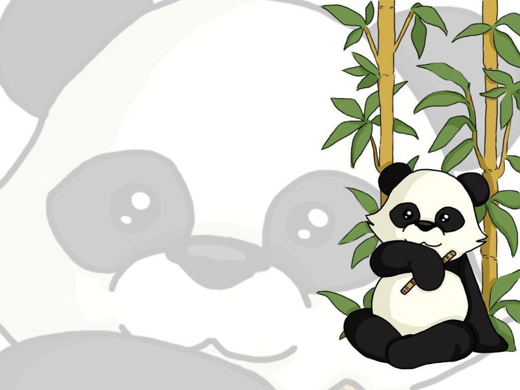 panda bear wallpaper – DriverLayer Search Engine