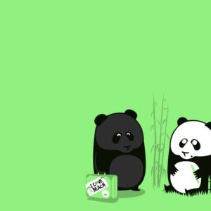 download Animals For > Cute Panda Bear Cartoon Wallpaper