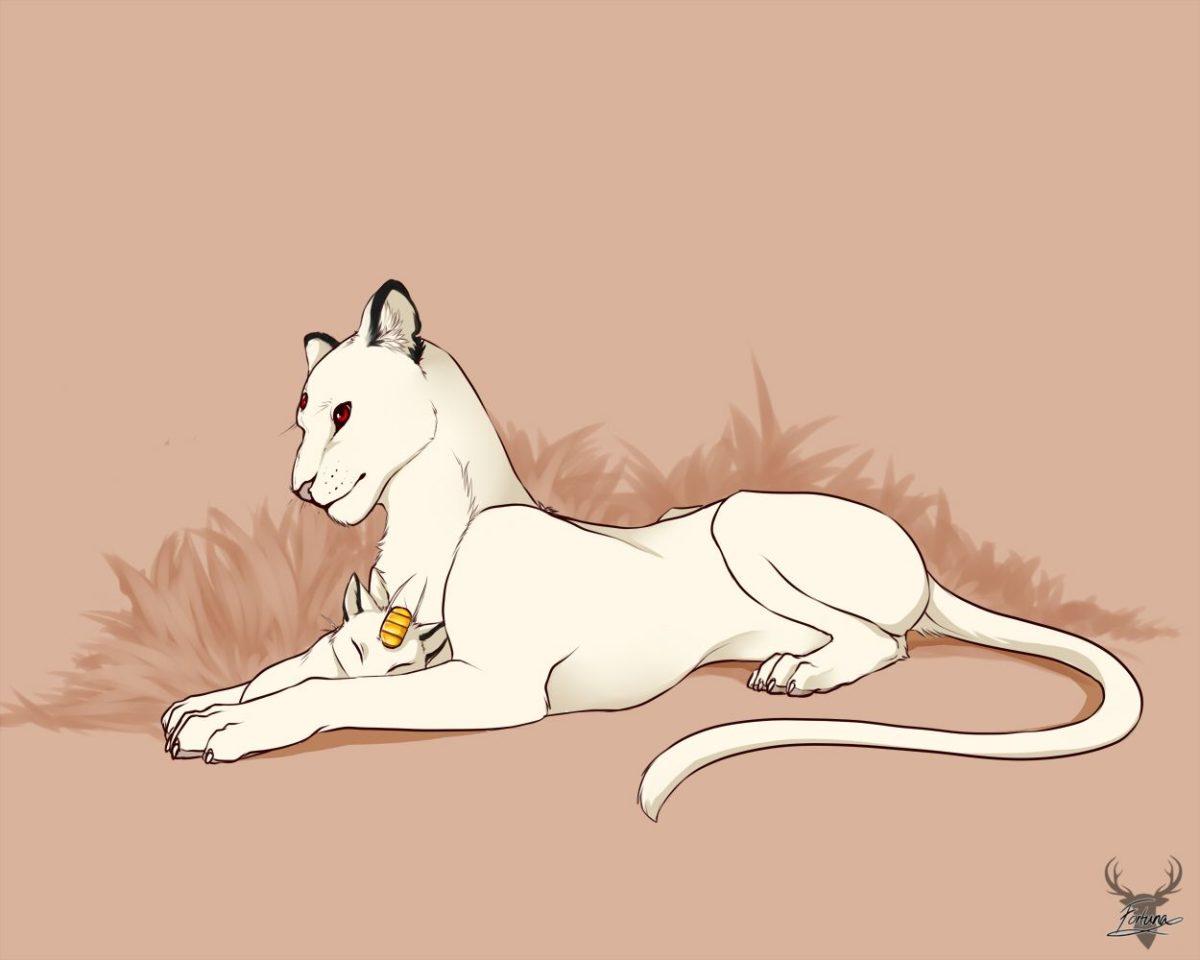 Meowth persian – www