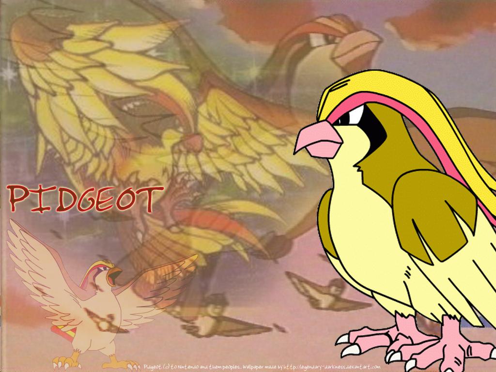Pidgeot Wallpaper by Legendary-Darkness on DeviantArt