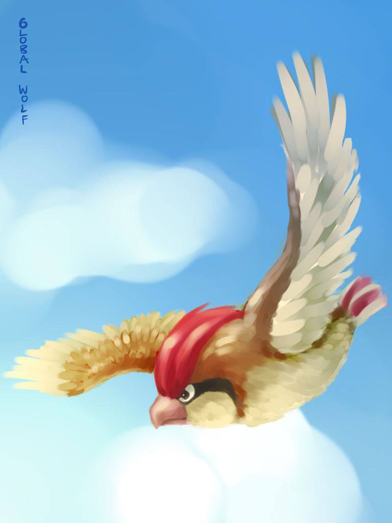 017 Pidgeotto by global-wolf on DeviantArt