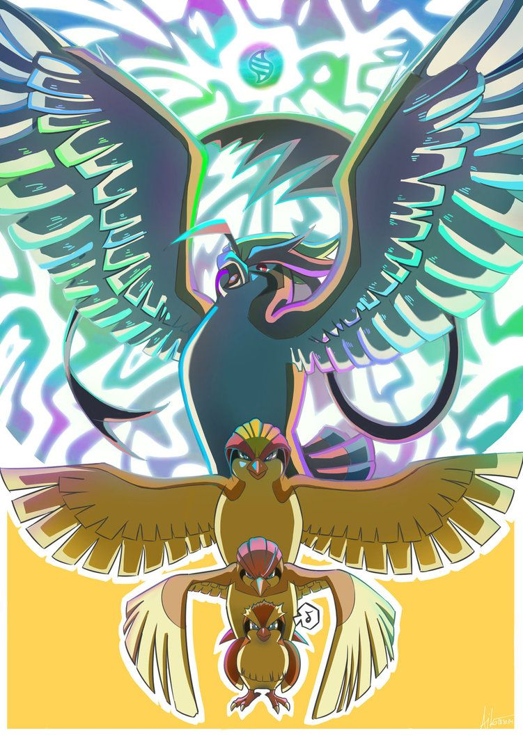 Evolution line: Pidgeot by Aiko102 on DeviantArt
