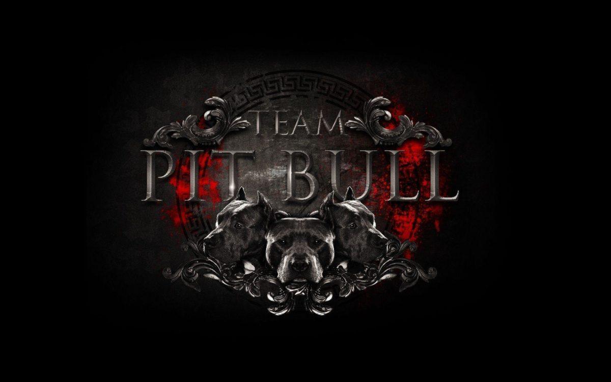 Images For > Pit Bulls Wallpaper
