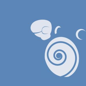 download 6 Poliwhirl (Pokémon) HD Wallpapers | Background Images …