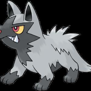 download Pokemon Poochyena by Sonicthehedgefox345 on DeviantArt
