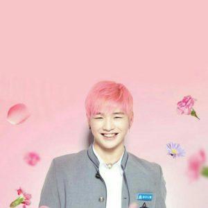 download Wallpaper Kang Daniel Produce 101 Season 2 MMO Entertaiment 강다니엘 …