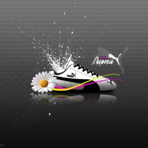 download Pin Puma Wallpapers on Pinterest