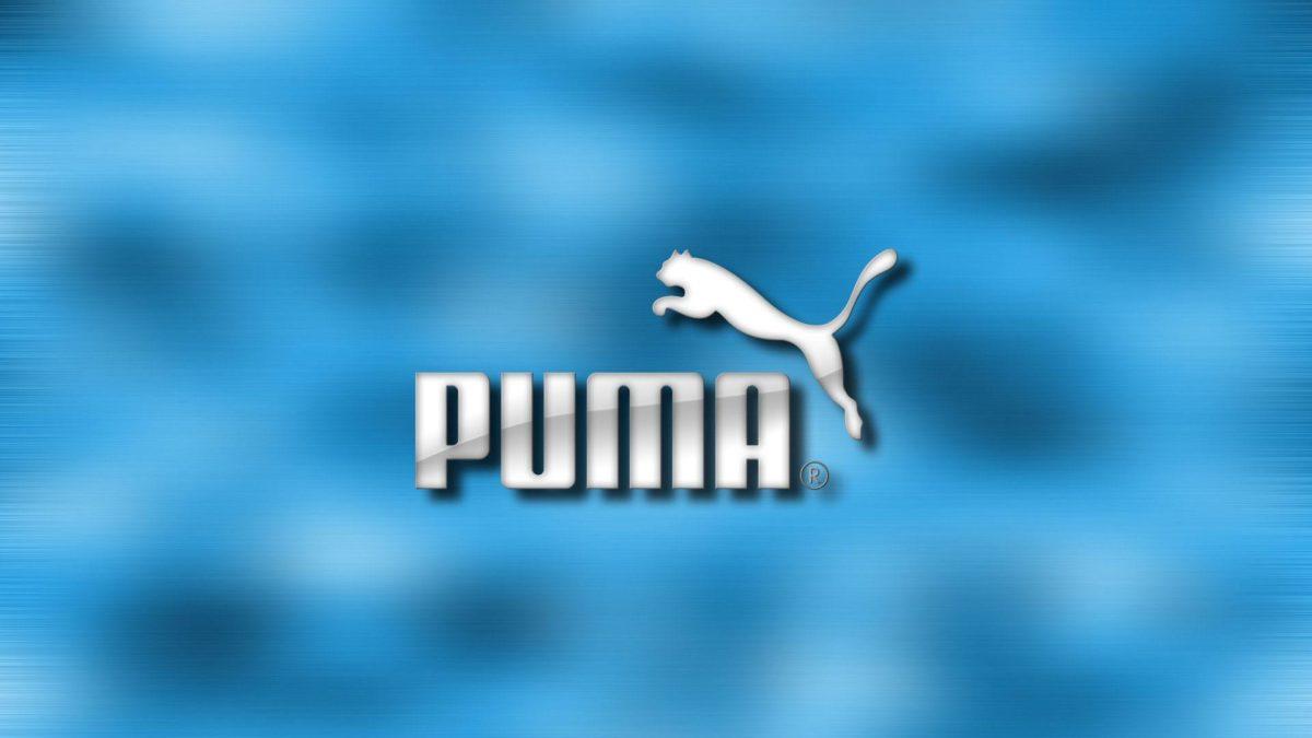 Puma wallpaper – 193679