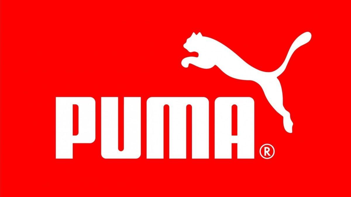 Puma Wallpaper 16477 1920×1080 px