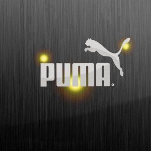 download TTN Ministry » puma wallpaper hd