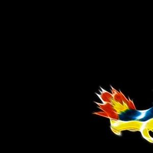 download Quilava Pokemon 576817 – WallDevil