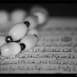 download The Noble Quran Wallpaper | Free Islamic Wallpapers – AllahsWord.com