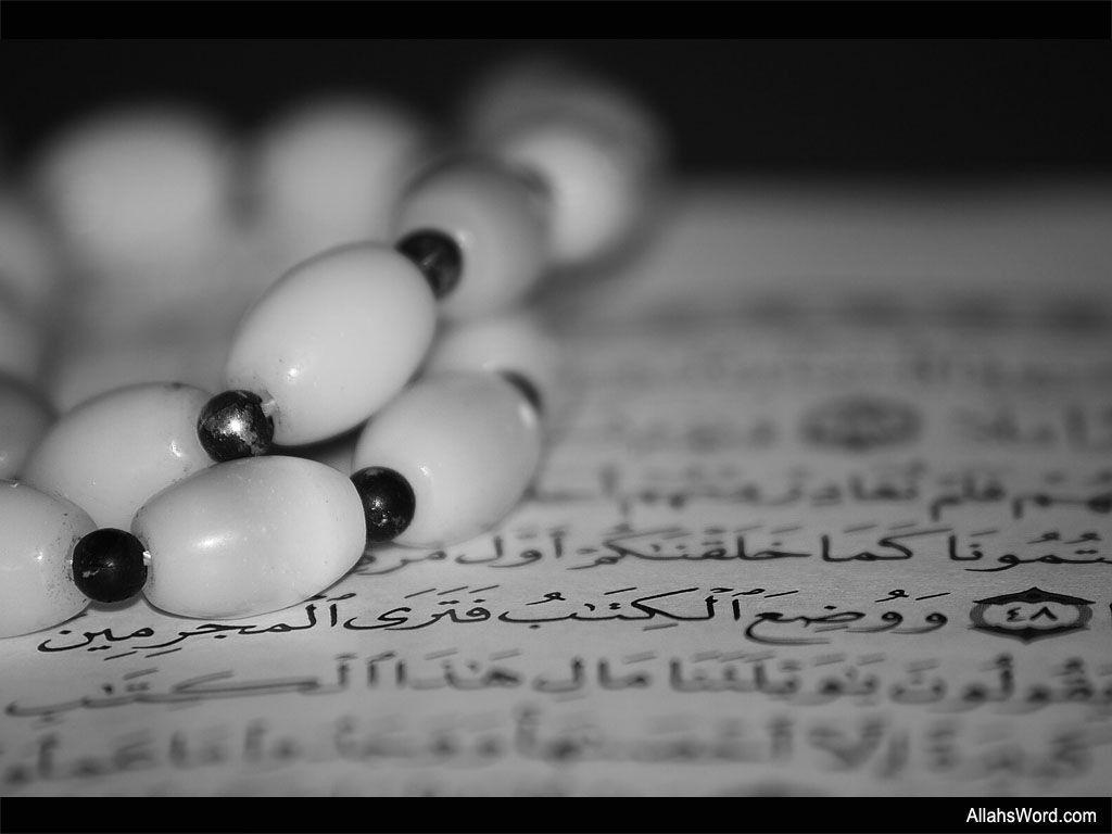 The Noble Quran Wallpaper   Free Islamic Wallpapers – AllahsWord.com
