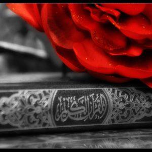 download Images For > Al Quran Wallpaper