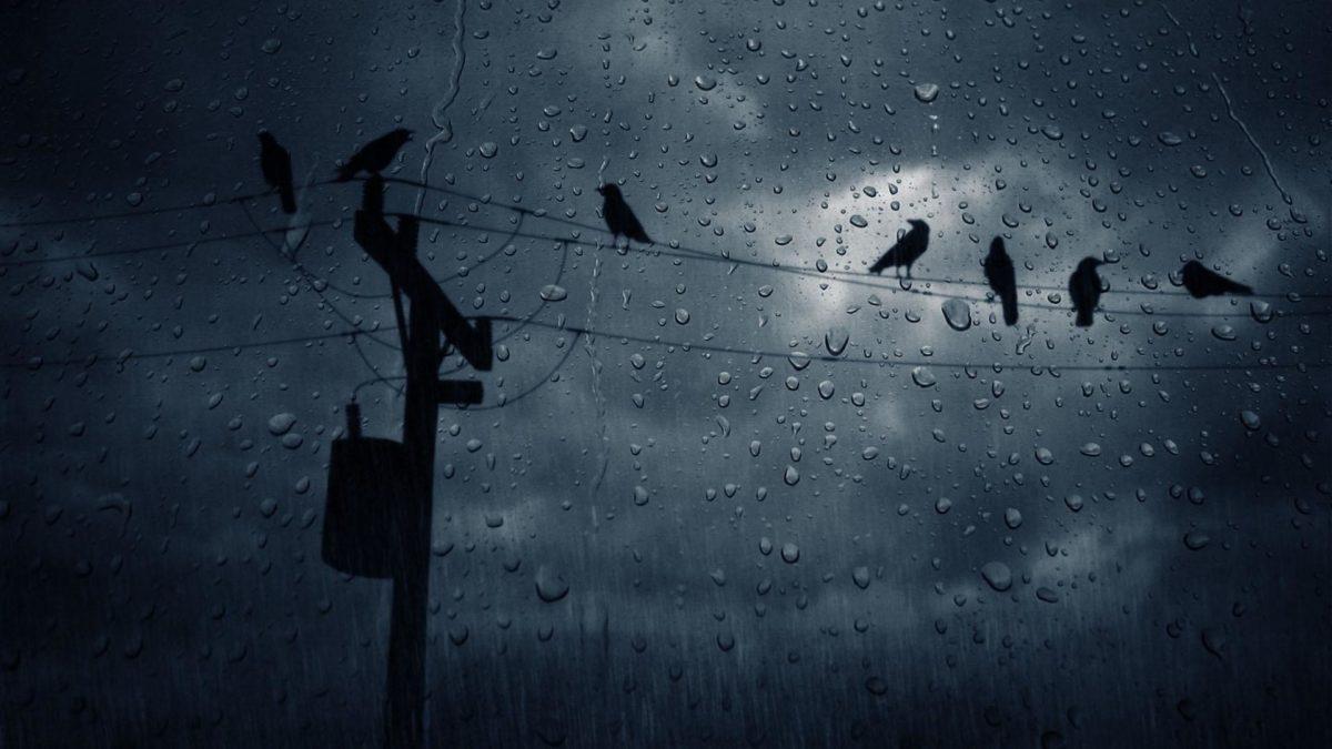 rain-wallpaper-3 – COPD Foundation Blog