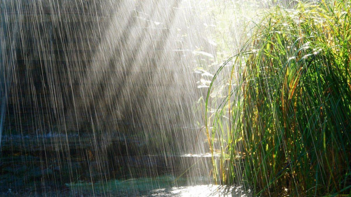 Beautiful Rain hd Wallpaper-1080p | HD Wallpapers|Nature Wallpapers