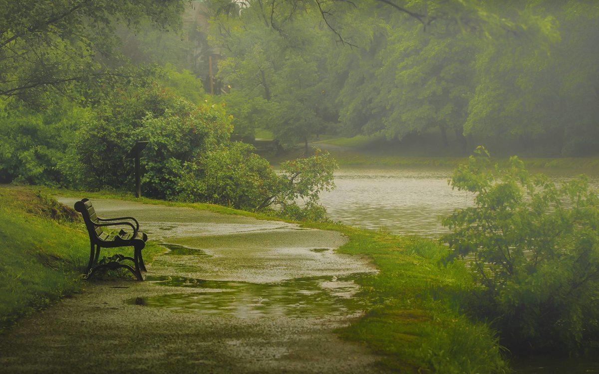 Beautiful-Rain-HD-Wallpapers-Free-Download | HD Free Wallpapers …