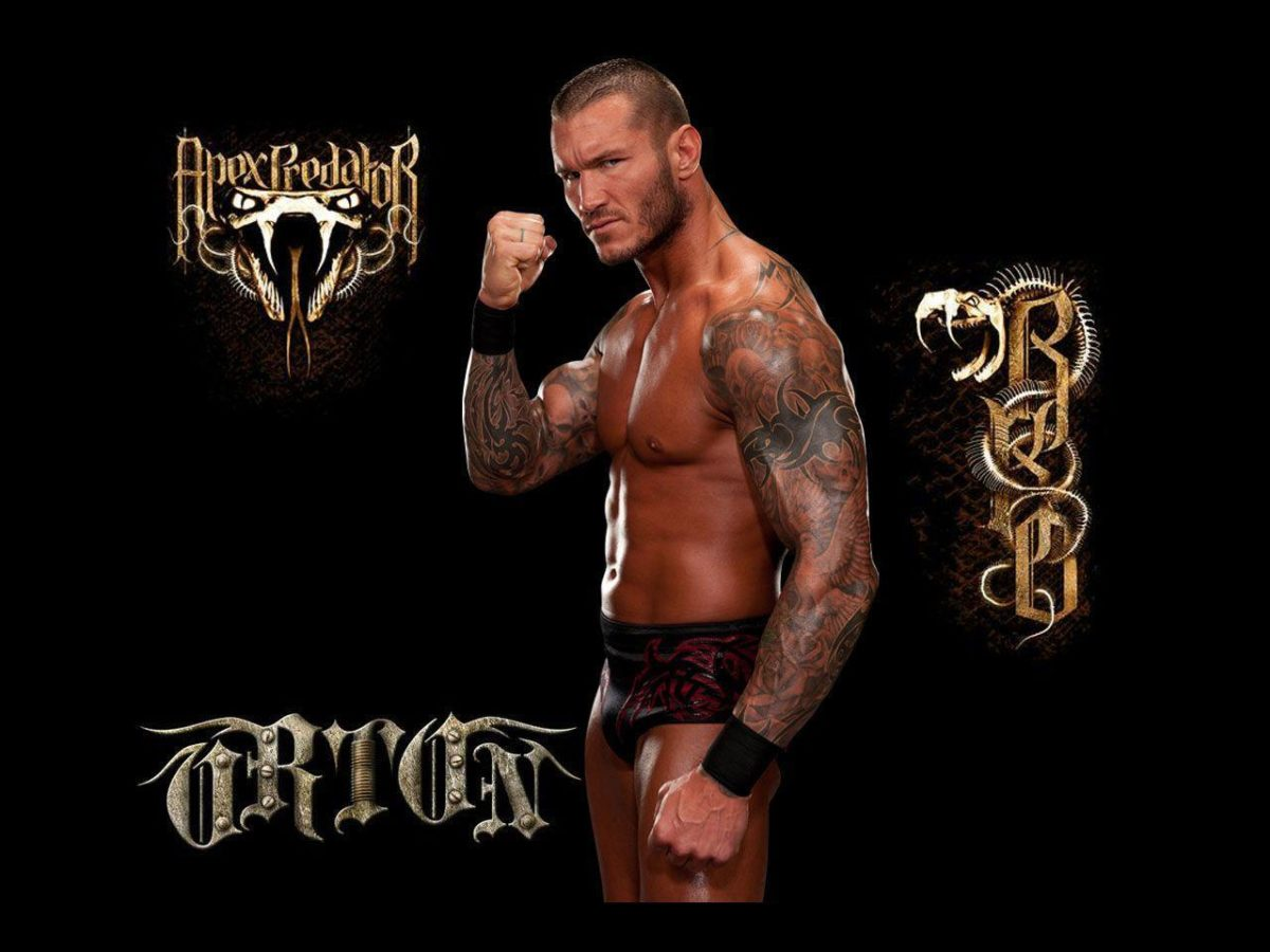 Randy Orton HD Wallpapers – HD Wallpapers Pop