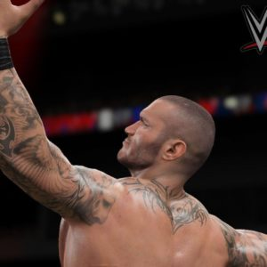 download 20 Best Randy Orton wallpapers HD