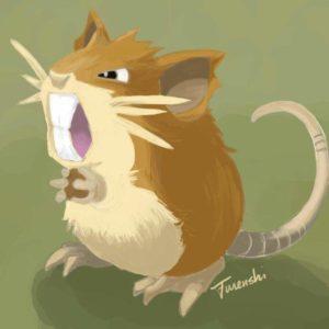 download My Favourite Pokémon… | Pokémon Amino