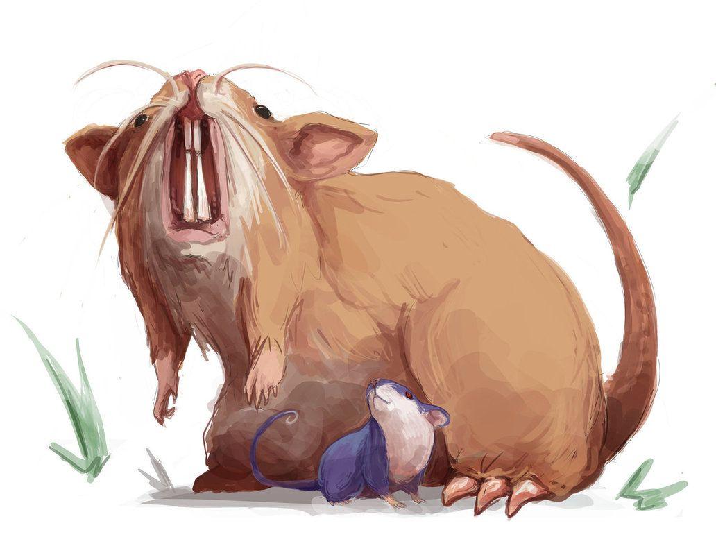 Rattata – Raticate by MrRedButcher on DeviantArt
