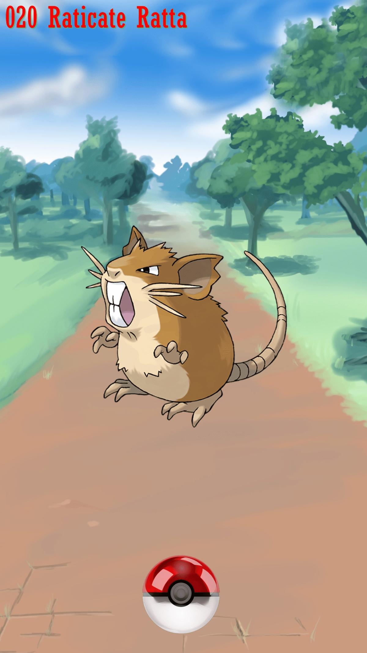020 Street Pokeball Raticate Ratta | Wallpaper