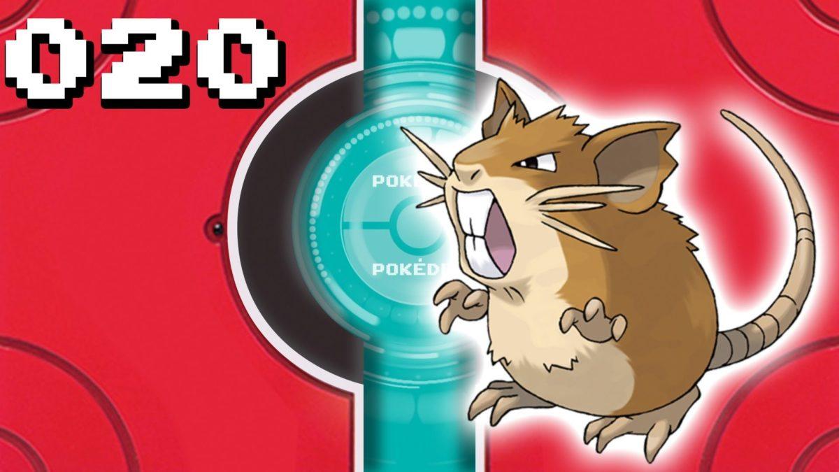 Pokémon Visual Pokedex (Kanto) – Raticate – 020 – YouTube