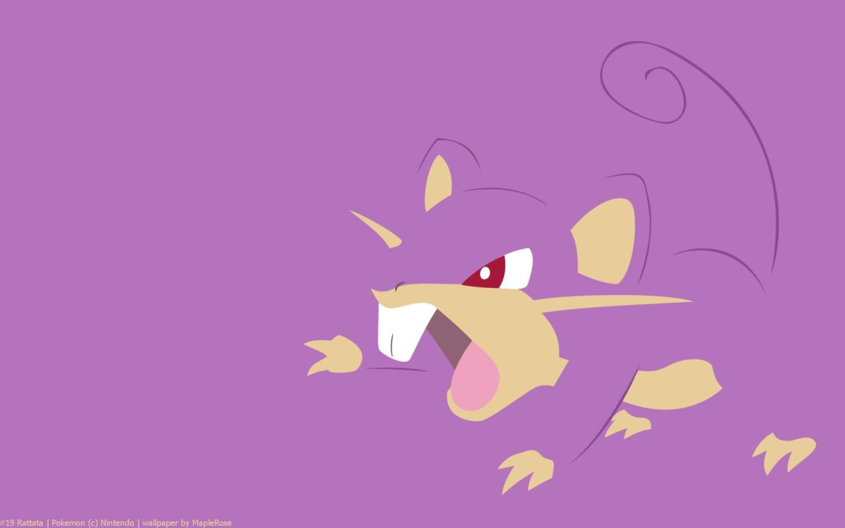 Rattata Pokemon HD Wallpaper – Free HD wallpapers, Iphone, Samsung …