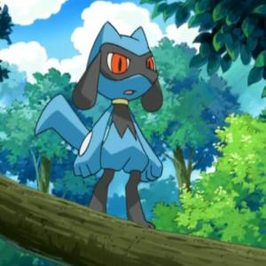 download Image – Riolu (anime).png | Pokémon Wiki | FANDOM powered by Wikia