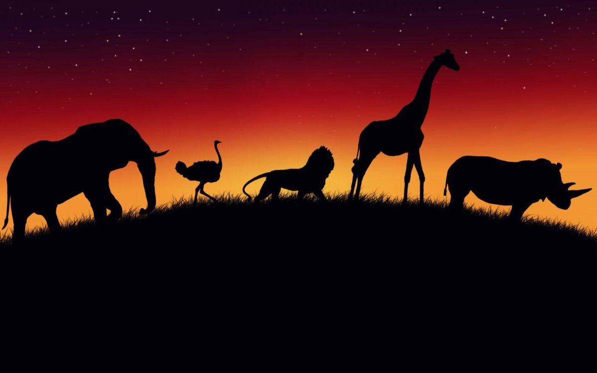 Kenya Wildlife Safari   Go Wild ….!!