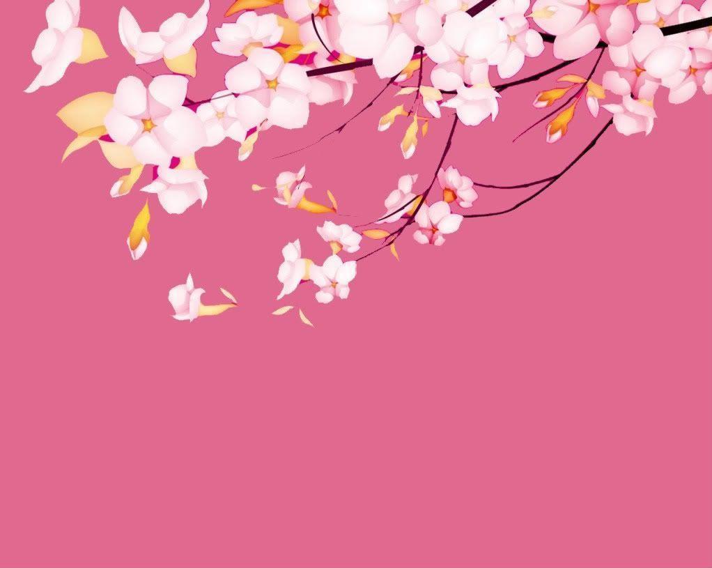 sakura.flower-wallpaper – Dhoomwallpaper.com | Latest HD Wallpaper …