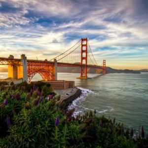 download Daily Wallpaper: Summer in San Francisco | I Like To Waste My Time