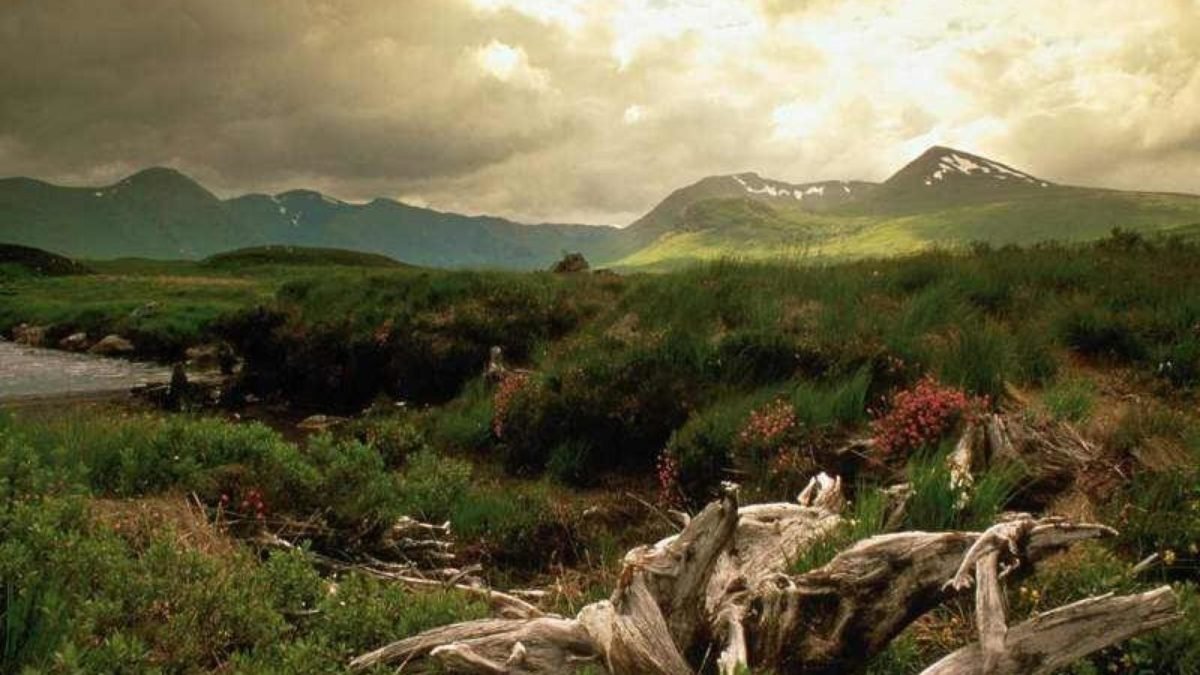 Scotland Wallpaper 07 – HD Wallpaper, Wallpaper Pics – The Best …