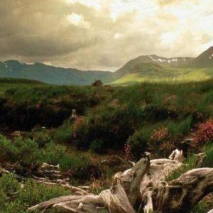 download Scotland Wallpaper 07 – HD Wallpaper, Wallpaper Pics – The Best …