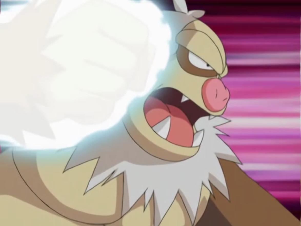 Image – Norman Slaking Focus Punch.png | Pokémon Wiki | FANDOM …